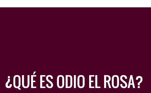 titulo_que_es_odio_el_rosa
